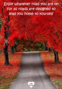 enjoy-whatever-road